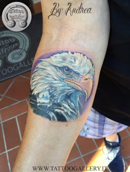 tattoos/ - eagle - 119348