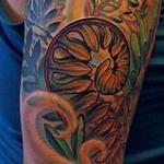 tattoos/ - Ressurection Ferns - 100456