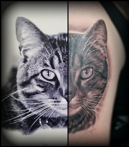 Nature Animal Cat - Black and Gray Cat portrait tattoo by Haylo