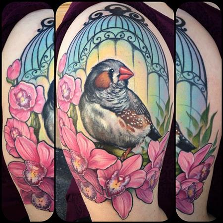 tattoos/ - zebra finch - 104737