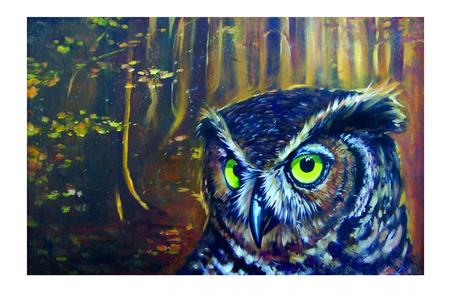 Art Galleries - Owl painting  - 75852