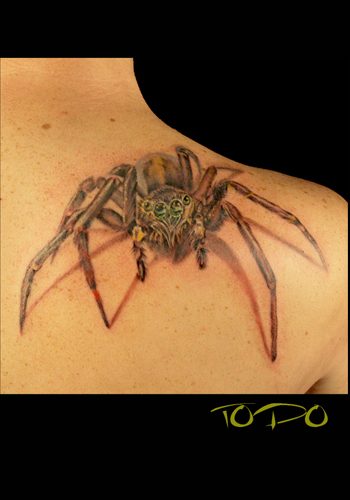 Keyword Galleries: Realistic Tattoos, Nature Animal Spider Tattoos,