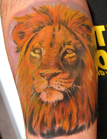 is a lion tattoo by Alex