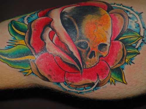 Tattoo Galleries: skull rose Tattoo Design