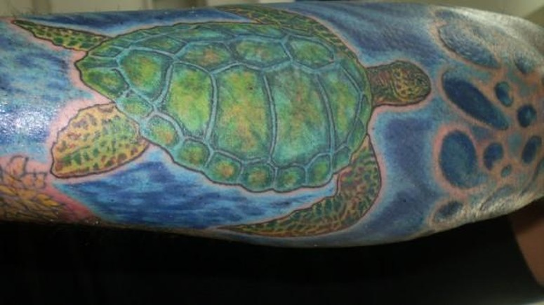 tribal sea turtle tattoos. tattoo flash info allergic to red tattoo ink