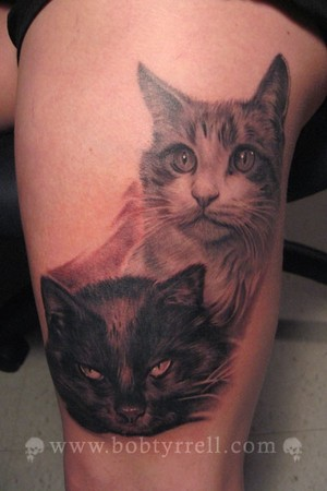 cats tattoo. Tattoos? cats tattoo