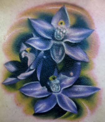 Nick Trammel Orchid Cover Up