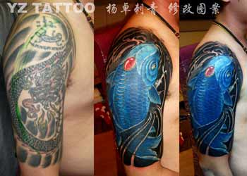 Yangzhuo koi cover up for Koi fish cover up