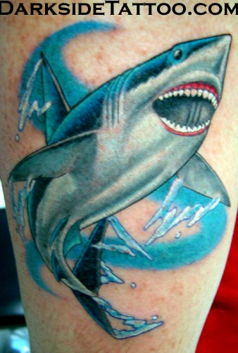 Shark Tattoos and Tattoo Designs. Thursday 15th of January 2009 08:46:20 PM