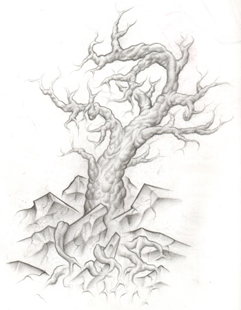 looking for unique drawings tree of life