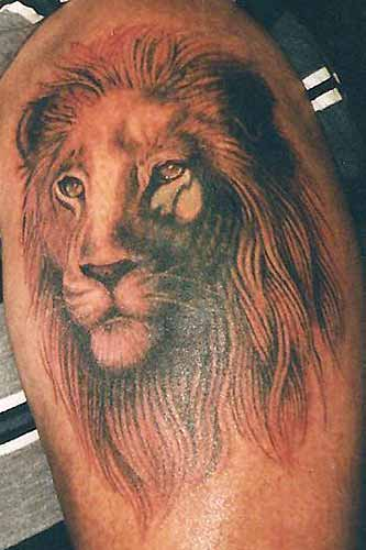 lion tattoo on forearm. Nature Animal Lion Tattoos