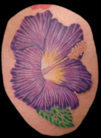 Comments: Purple hibiscus flower, an addition to the hibiscus tattoo that