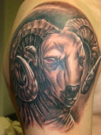 Daniel Dudek - Ram head tattoo