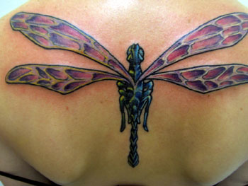 Looking for unique tattoos dragonfly for Tattoo shops in wichita falls tx