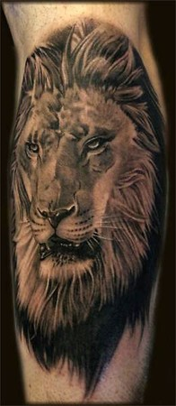 http://www.zhippo.com/ImmortalInkUKHOSTED/images/gallery/medium/Lion_Tattoo.jpg