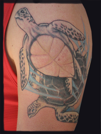 Tattoos. Nature Animal Turtle Tattoos. seaturtles