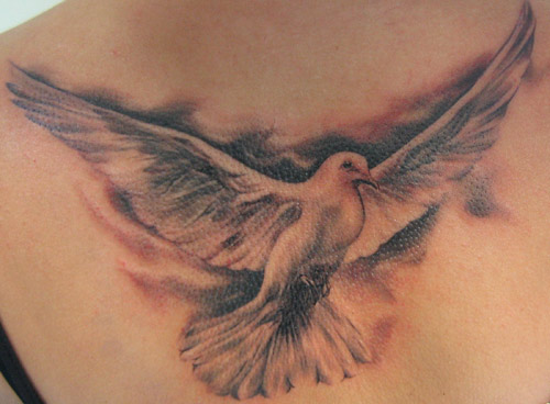 Regardless of your religious beliefs the dove tattoo can be a beautiful and