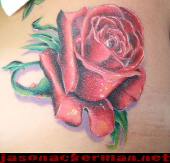 Tatto Bilder on Rose Tattoo   Tattoos