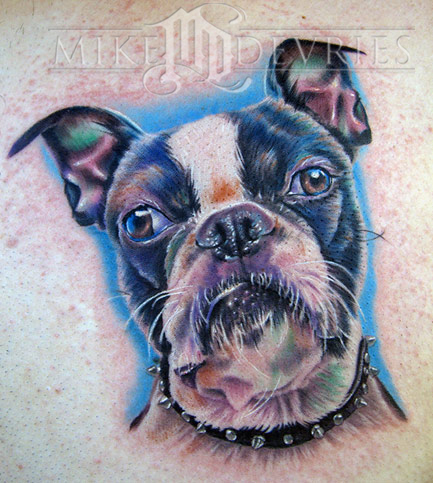 Looking for unique Nature Animal tattoos Tattoos?  Boston Terrier