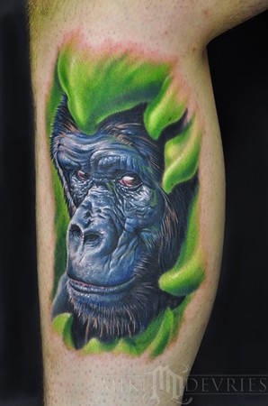 Got a lot of requests for a gorilla tattoo DVD and here is what i did for it