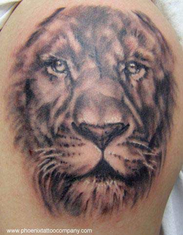 Realistic Lion Tattoo in black and gray