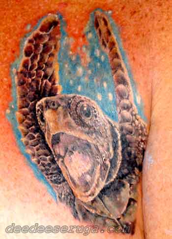Looking for unique Tattoos? sea turtle color tattoo