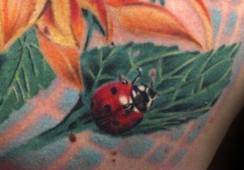 Ladybug Tattoos on Looking For Unique Michele Turco Tattoos  Ladybug Tattoo