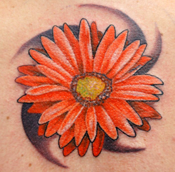 Trent Edwards @ surrealskin : Tattoos : Nature : gerber daisy