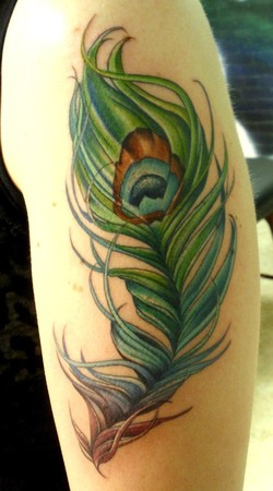 Feather Tattoo on Tattoos   Massachusetts   Page 43   Peacock Feather Tattoo
