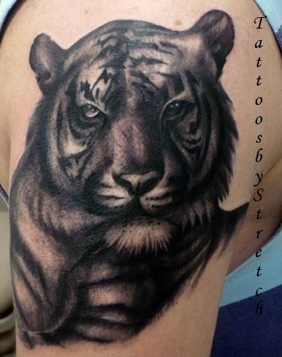 < previous | next > Looking for unique Tattoos? Tiger