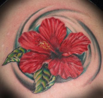 Hibiscus Flower Picture on Forbidden Images Custom Tattoo   Tattoos   Jeremiah Mccabe   Hibiscus