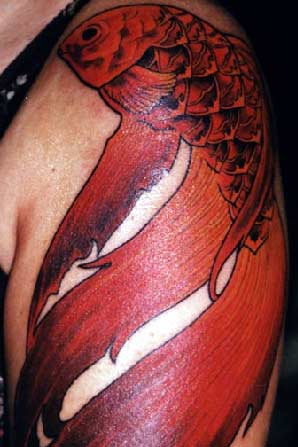 < previous | next > Looking for unique Tattoos? Red Coi
