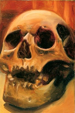 Art Galleries - 2x3 Skull Art - 39807
