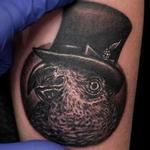 Tattoo-Books - Parrot Tattoo - 134132