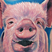 Tattoo-Books - Pig Tattoo - 40994
