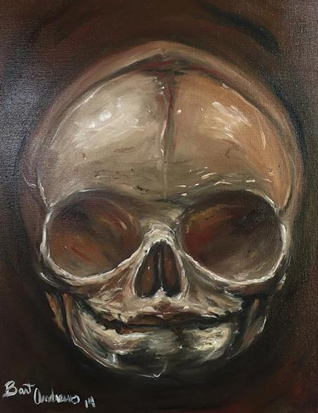 Art Galleries - Fetal Skull - 117051
